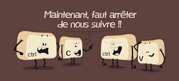 Renseignements T-shirt-ctrl-c-et-ctrl-v-geek1